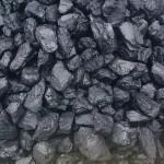 Uhlí černé ořech sibiř 25-50